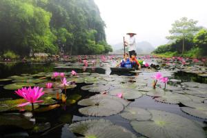 Du lịch chùa Hương – Kinh nghiệm chi tiết từ A-Z