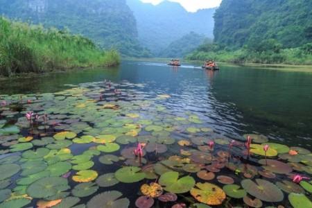 nan nước xanh biếc du lịch ninh bình